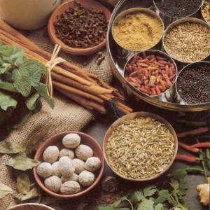 Cursus Vedische Kookkunst